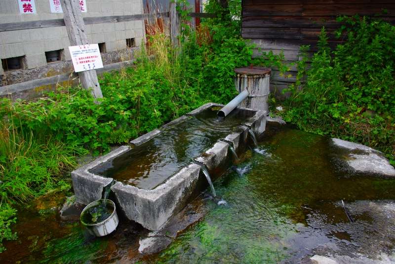 大沼散歩~あらこんなところに湧水が